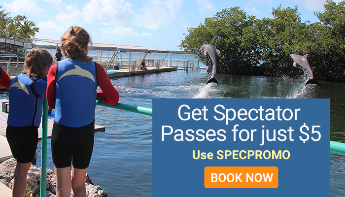 Get Spectator Passes for just $5. Use SPECPROMO. Book Now.