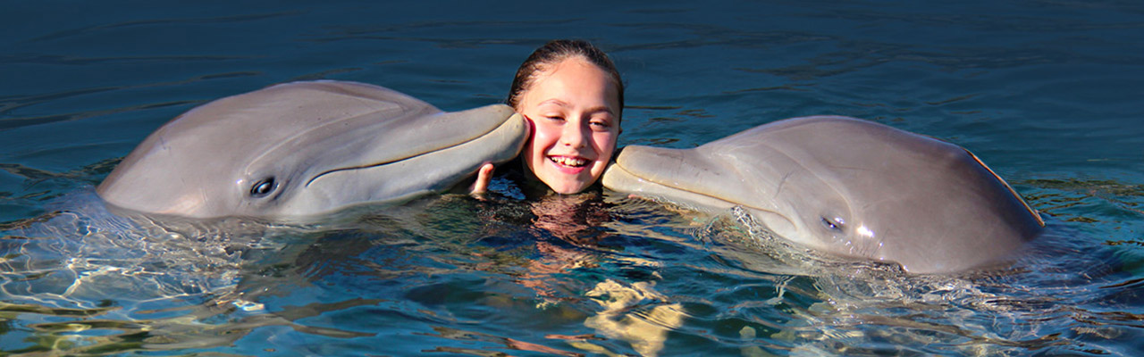 Dolphins Plus dolphin trainer for a day program