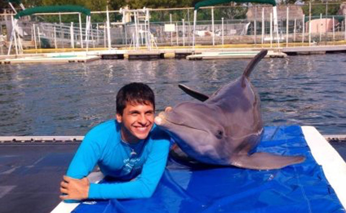 Dolphins Plus animal care internship program 1