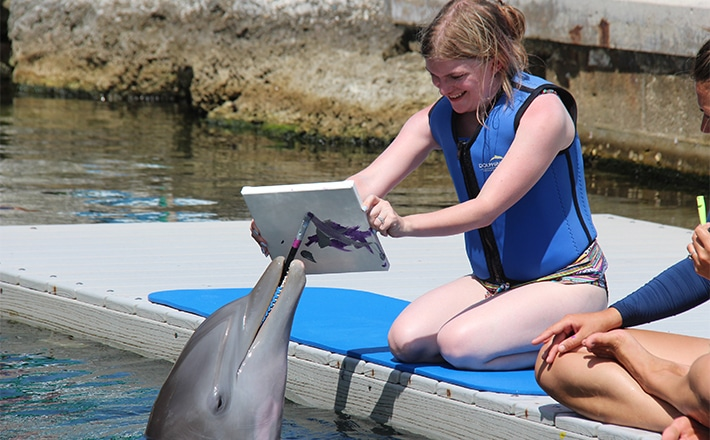 Girl holding up a canvas while a dolphin paints on it