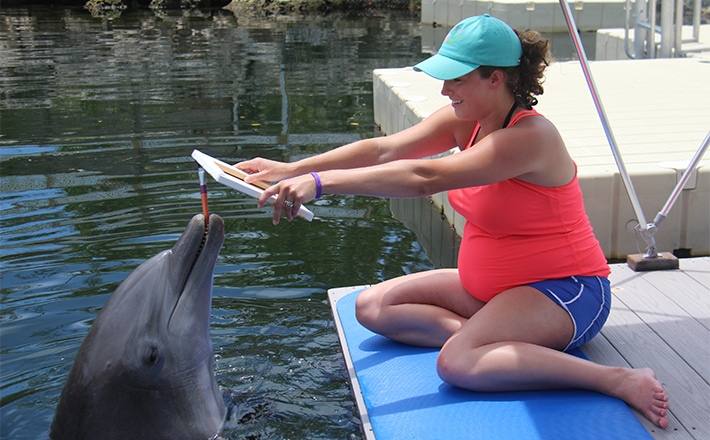 Woman holding up a canvas while a dolphin paints on it