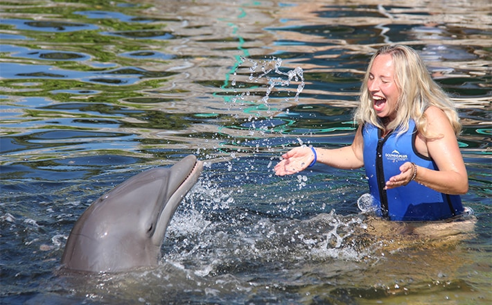 Woman getting splashed by a dolphin