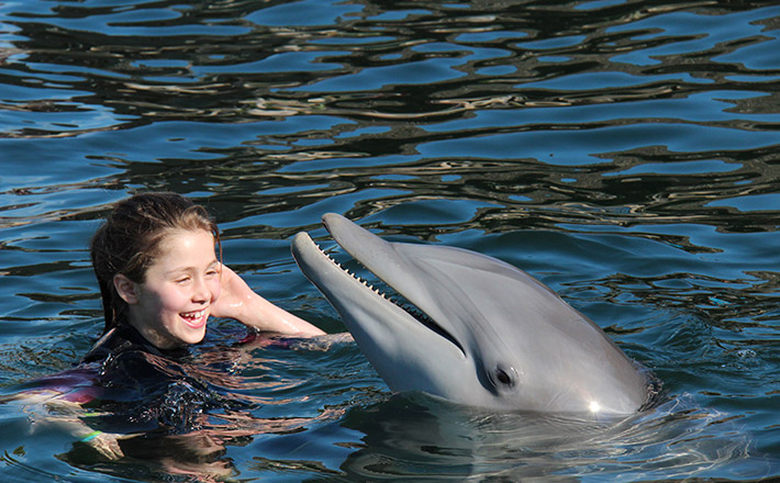 Dolphin trainer for a day swim with dolphin