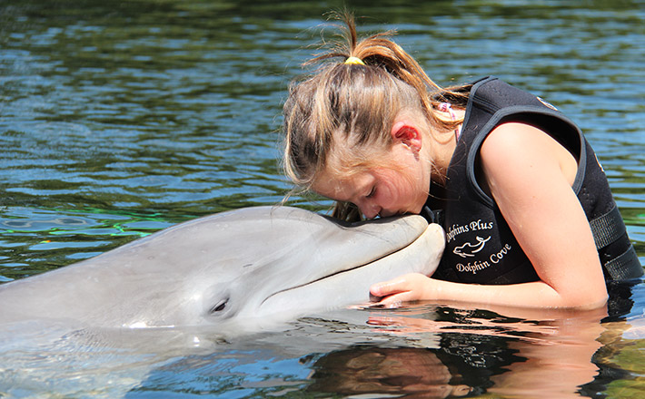 Shallow water dolphin encounter kids love
