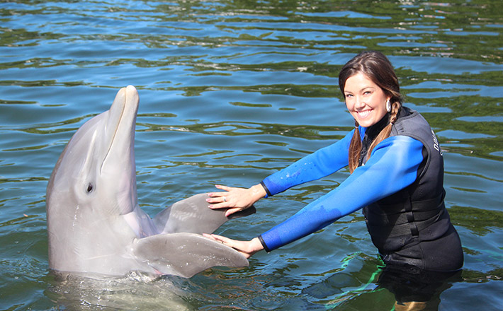 Shallow water dolphin encounter trainer