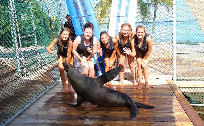 Dolphins Plus animal care internship group
