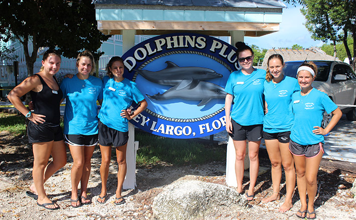 Dolphins Plus animal care interns