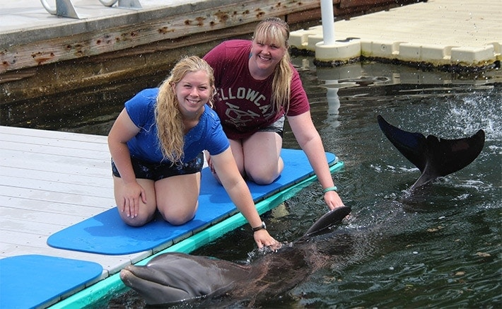 Two women touching a dolphin while dockside