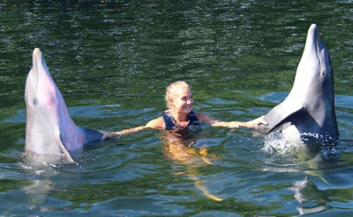 Woman holding flippers of two dolphins while in the water