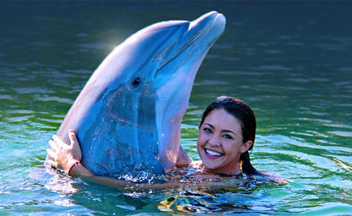 Woman hugging a dolphin while in the water